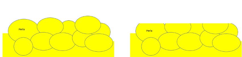 Representación de perlas de adipocitos del tocino