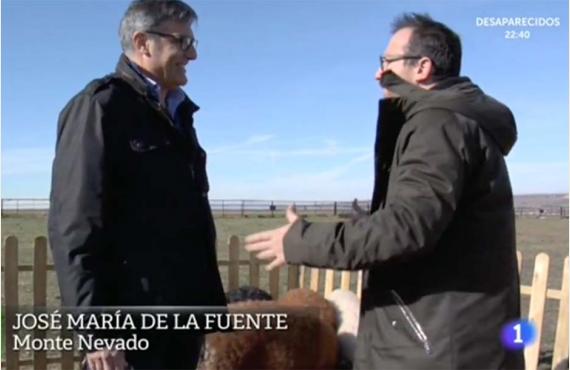 Los cerdos Mangalicas de Monte Nevado en el programa de TVE Aquí la Tierra